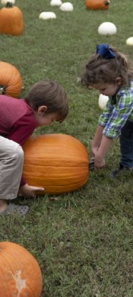 Brother and sister Luke and Tillery Phillips try to pick up their giant pumpkin at Norwood United Methodist Church.