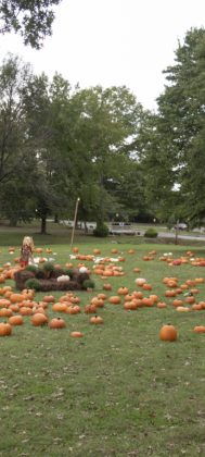 The pumpkin patch is ready for guests at Norwood UMC.