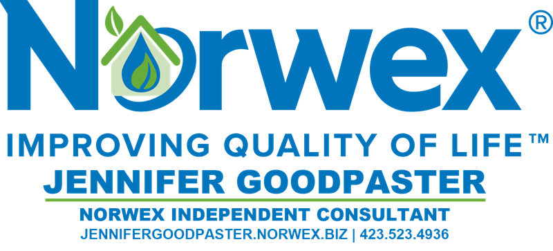 NORWEX-LOGO-BANNER-8.1.2020-800-PXL1993.png